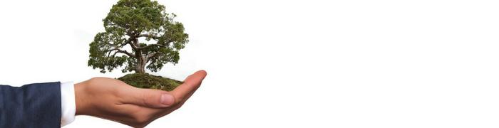 impact investing, denver financial advisor